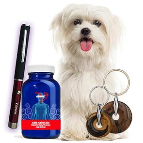 Pet Wellness System